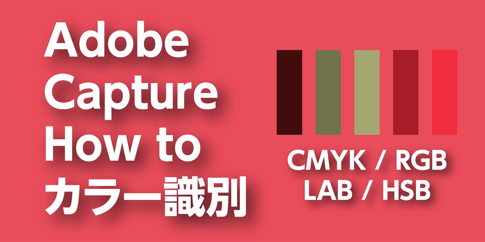 超絶便利【Adobe capture】7. 撮影画面のカラーコードを検索する方法